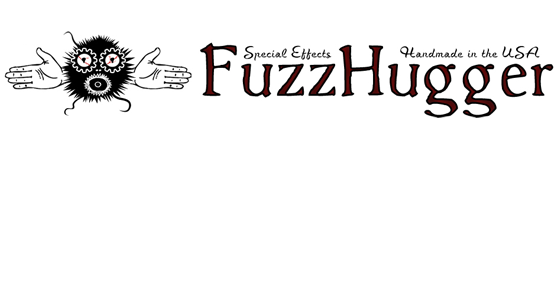 FuzzHugger