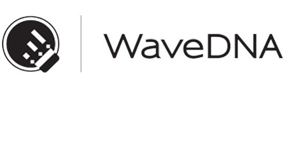 Wave DNA