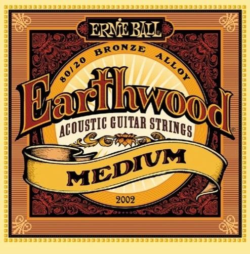 Ernie Ball 2002 Earthwood 80/20 Bronze Acoustic Guitar Strings (13-56)