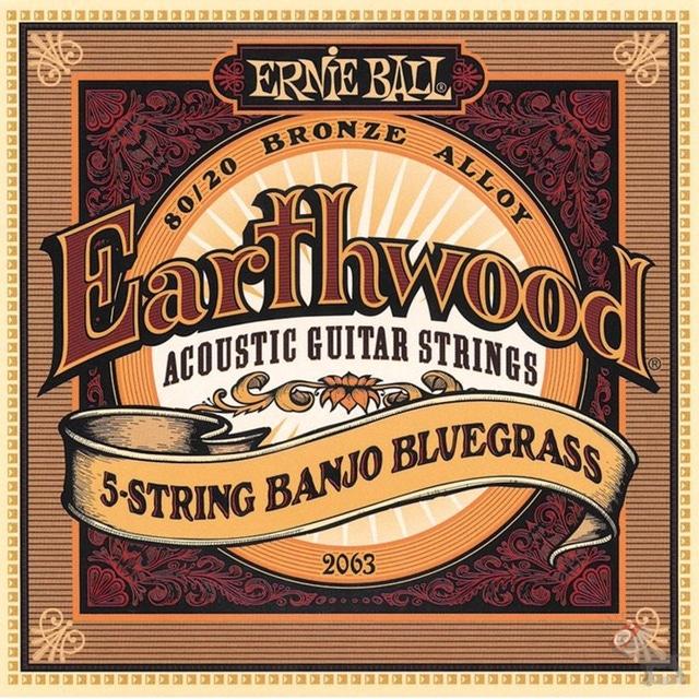 Ernie Ball 2063 Earthwood 80/20 Bronze 5-string Banjo Bluegrass Loop End Strings (9-20)