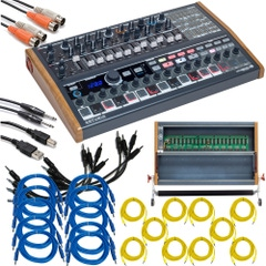 Arturia MiniBrute 2S Semi-Modular Synthesizer/Sequencer with RackBrute 6U Eurorack Case and Cables