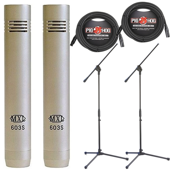 MXL 603 Condenser Microphone Pair with Shock Mounts, Windscreen, Case, Stands, and Cables