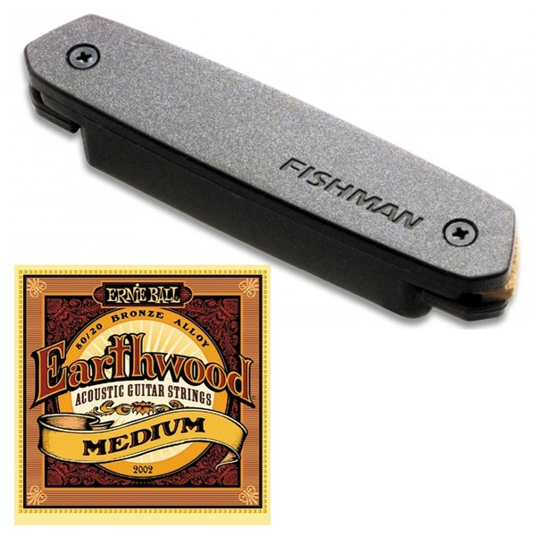 Fishman Neo-D Humbucker PRO-NEO-D02 Magnetic Soundhole Pickup with Ernie Ball Strings