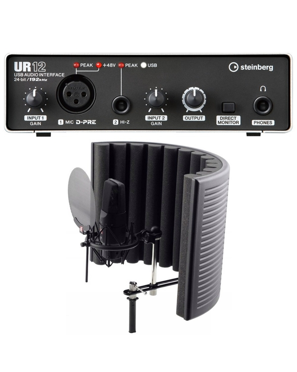 Steinberg UR12 USB Interface Recording Bundle with sE Electronics X1 Studio Pack and Software