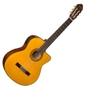 Washburn C44CE Classical Series Nylon String Acoustic Guitar
