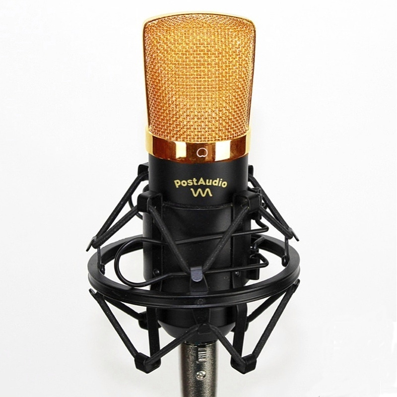 Post Audio C7P Microphone Large Diaphragm Recording Studio Condenser Vocal Mic