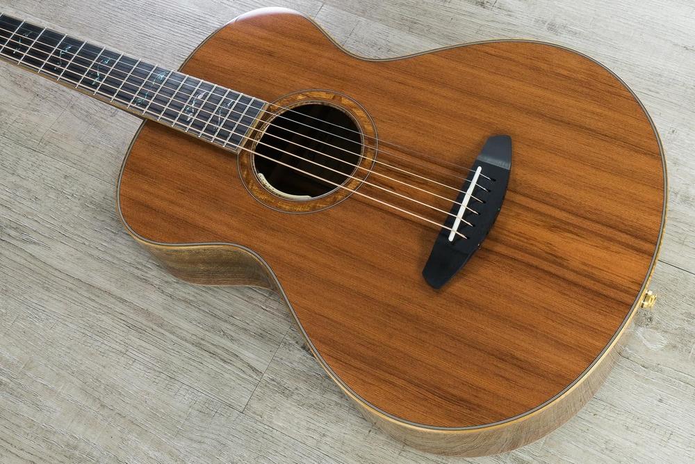 Breedlove 2019 Masterclass Custom Concertina E Acoustic-Electric Guitar, Redwood - Figured Walnut, LR Baggs Anthem Tru-Mic
