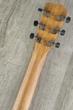 Breedlove Guitars 2019 USA Concerto E Acoustic Electric Guitar, Sitka Spruce - Mahogany, Cinnamon Burst, Hard Case