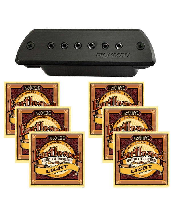 Fishman Blackstack Acoustic Soundhole Pickup with EB-2004 Light Guitar Strings
