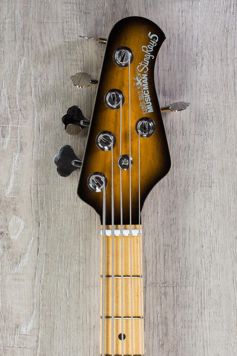 pitbull audio ernie ball music man stingray 5 5 string electric bass matching headstock maple. Black Bedroom Furniture Sets. Home Design Ideas