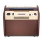 Fishman Loudbox Mini PRO-LBX-500 Acoustic Amplifier