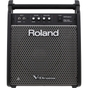 Roland PM-100 Personal Monitor for V-Drums Electronic Drums, 80 Watts, 1x10''