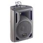 Stagg SMS8 100-Watt DJ Live Sound Active Powered Speaker