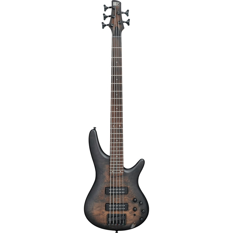 Ibanez SR405EBCWNGF SR 5-String Electric Bass in Natural Gray Burst Flat