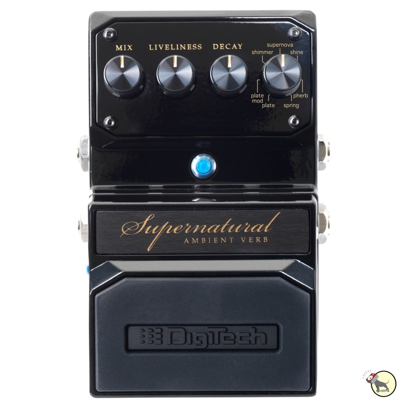Digitech Hardwire Supernatural Ambient Stereo Reverb Pedal