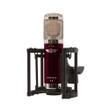Vanguard Audio Labs V4 Large-Diaphragm Multi-Pattern Condenser Recording Microphone
